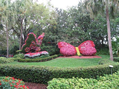 Flower Butterfly at Busch Gardens Tampa, Florida. Busch Gardens ...