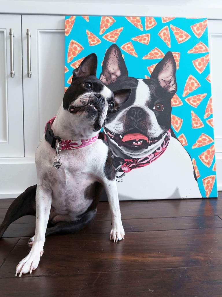 Pop Your Pup Canvas Print Your Pet On This Large Canvas Canvas Canvas Prints Custom Art