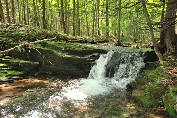 Glasco Cottage. Beautiful Catskills waterfall on 1.5 acres in Woodstock, NY.