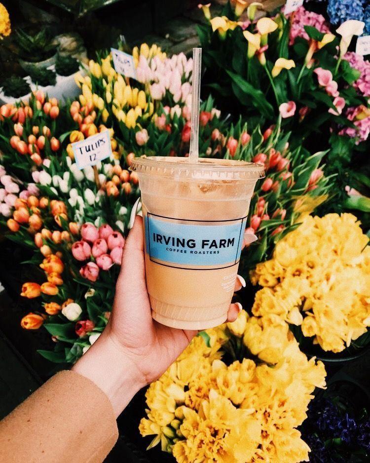 Pinterest jjuliakimm coffee health benefits coffee