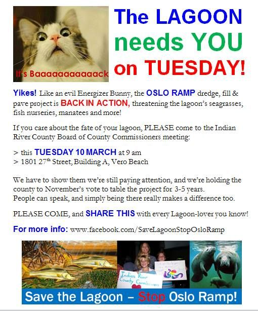 This upcoming Tuesday, March 10th at 9am join the rally to save the lagoon!
