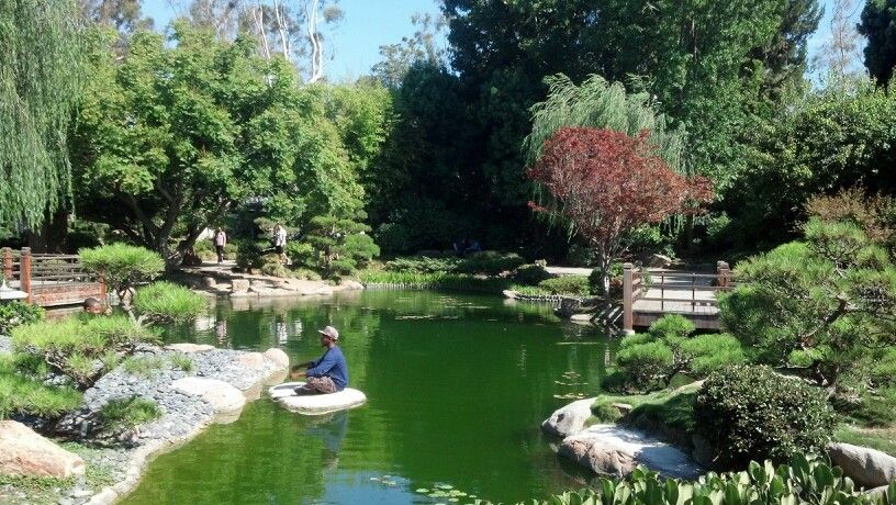 Japanese Garden at CSULB , Long Beach | Long Beach, CA | Pinterest ...