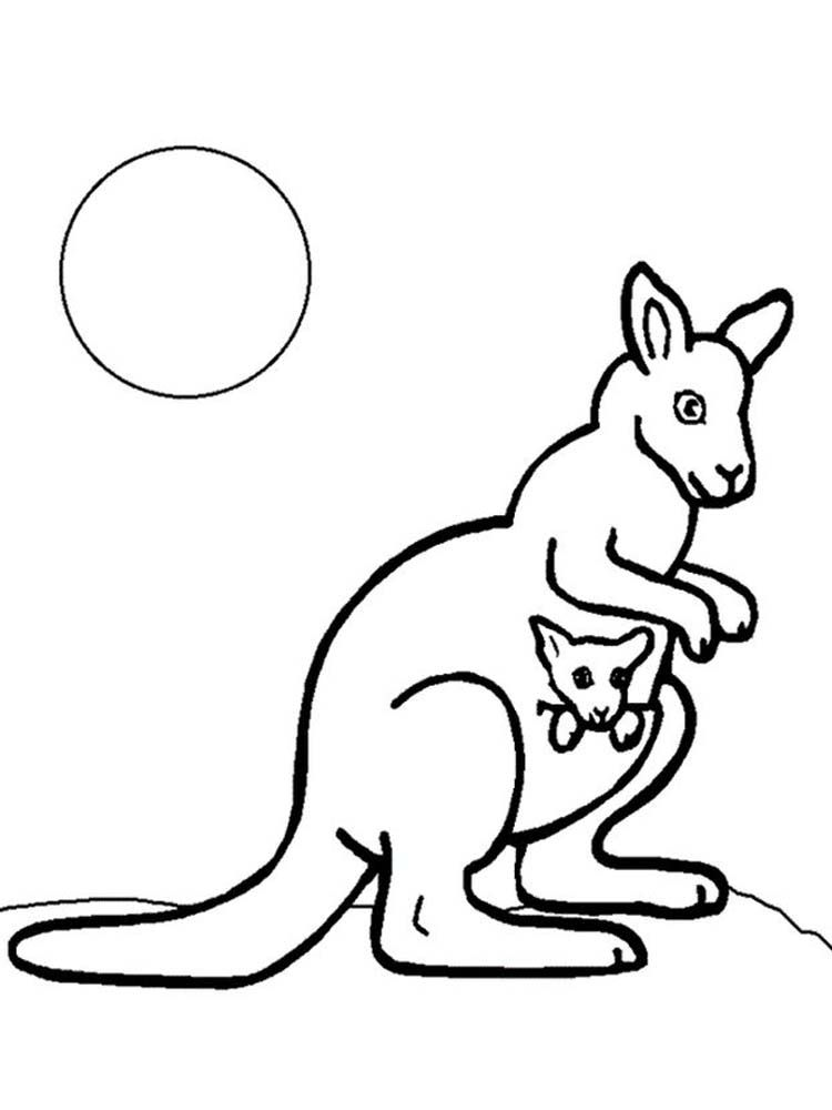 Baby Kangaroo In Pouch Coloring Page