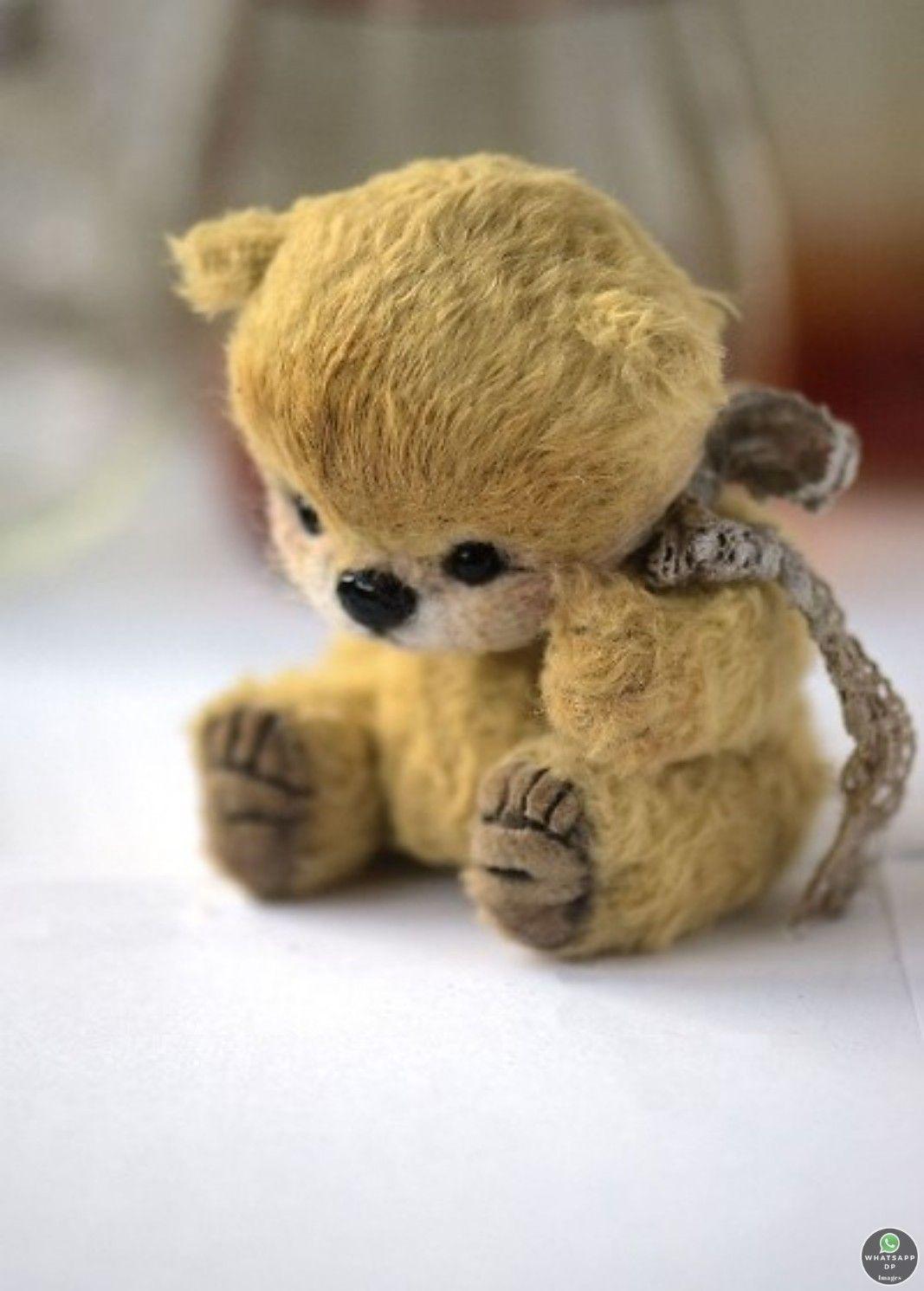 259+ Teddy Bear Images Download in 2020 Teddy bear