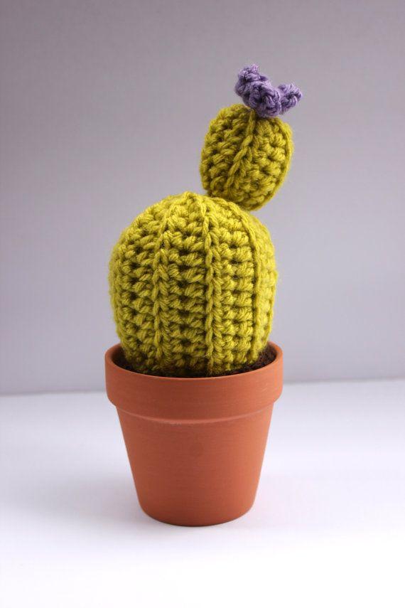 cactus avec des fleurs en pot de terre cuite par apartment105shop doudous pinterest. Black Bedroom Furniture Sets. Home Design Ideas