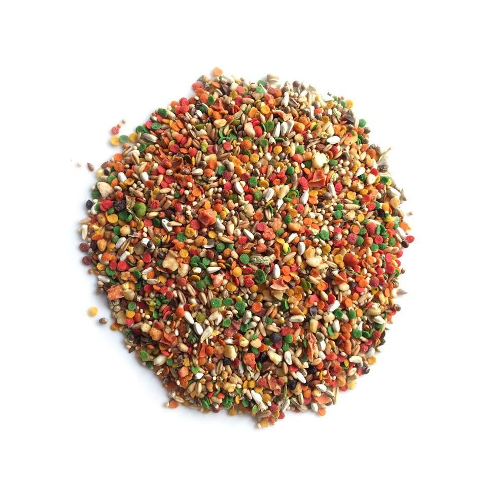Custom Aromatic Seed Blends for your pet bird! Pet birds