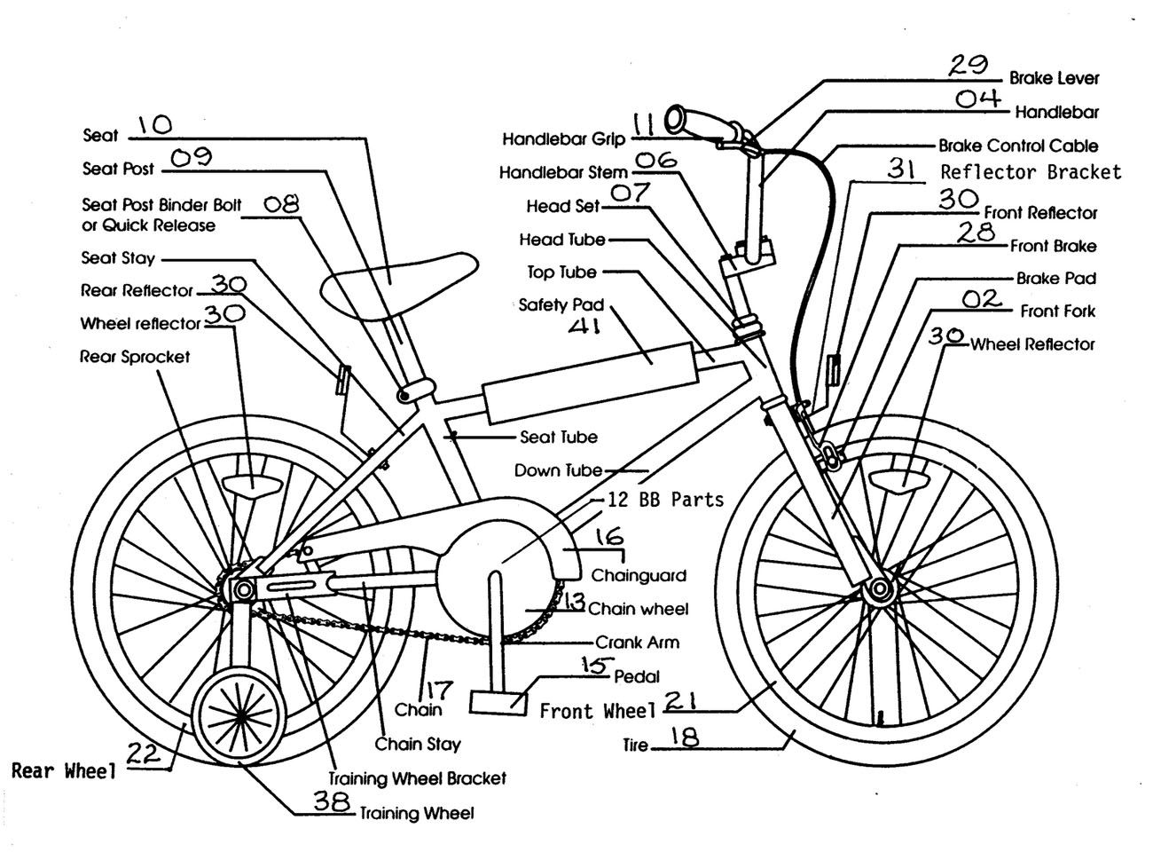Bicycle Structure Lateral View Labeled Diagram Anatomy Note World Frame The Of Is Anatomynotecom