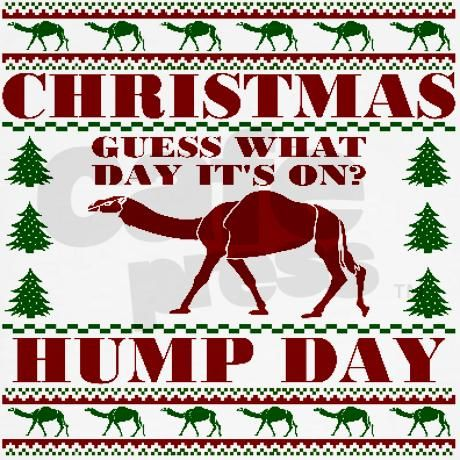 Hump day Guess What Christmas Is Hooded Sweatshirt