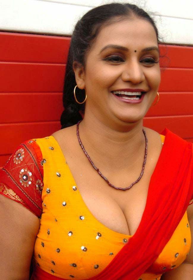 Tamil Telugu Malayalam South Indian Mallu Masala Actress Apoorva In Blouse And Saree Pics Gallery
