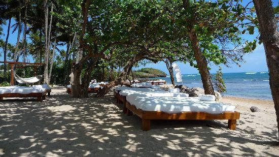 Serenity Beach Lifestyle Holiday Vacation Resort Puerto Plata Dominican Republic Summer