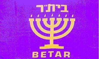"""3'x5' BETAR FLAG, beitar herut jew hanukkah jewish israel israeli by ,. $9.99. FlagDistributor does not necessarily endorse any meanings or connotations you may assign to this or any other flag, """"Meaning, like beauty, is in the eye of the beholder."""" We support the spirit of the 1st Amendment to the U.S Constitution; Censorship is UnAmerican and we don't practice it. Over 1,000 different designs in stock, perhaps the largest selection of flags in the world. Customer Satisfac..."""