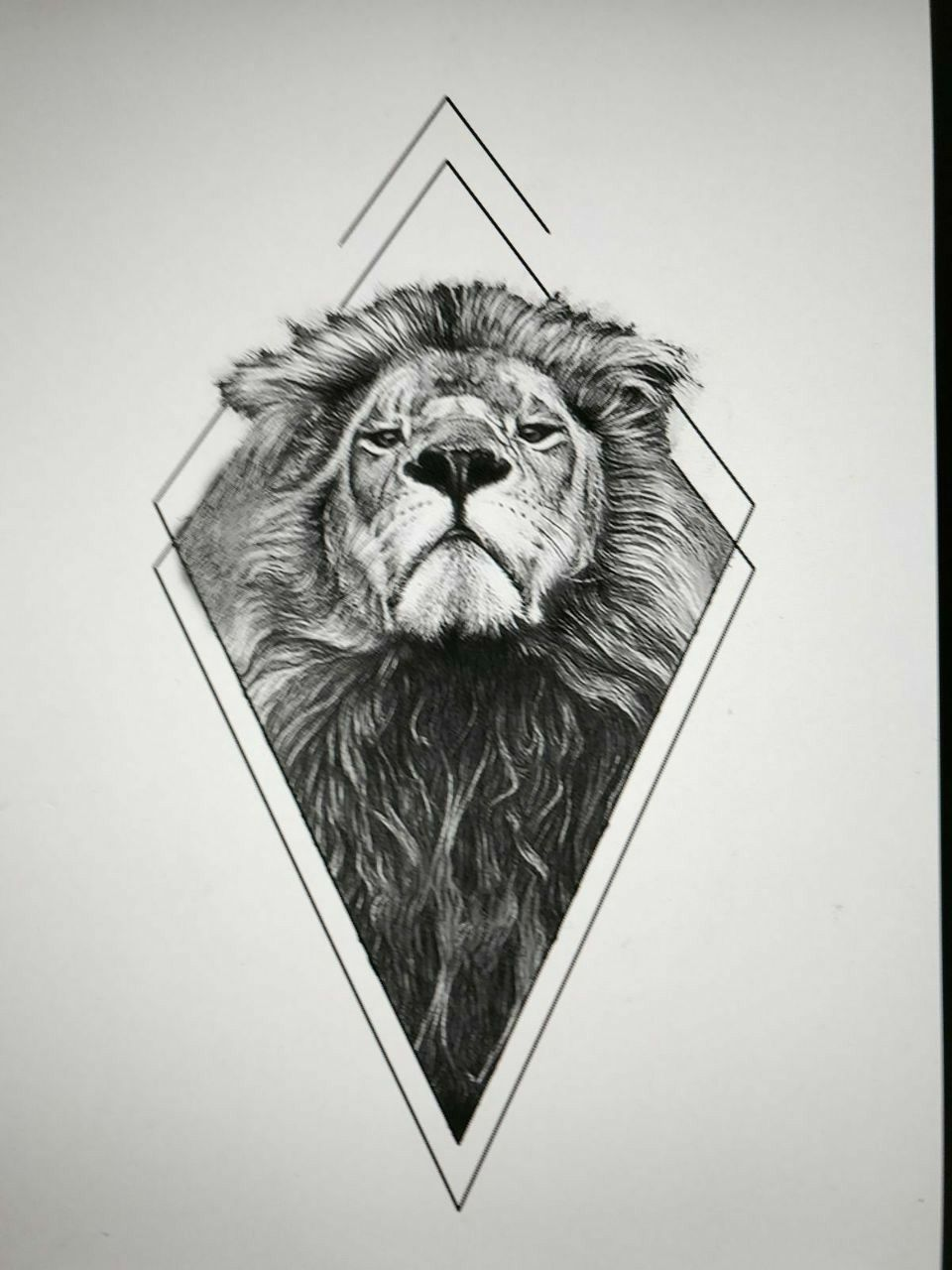 geometric lion tattoo tattoo pinterest. Black Bedroom Furniture Sets. Home Design Ideas