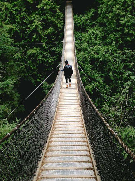 10 The Best World's Canyon Walkways | vagary ✈ drapetomania ✈ eunoia ✈ sweven ✈ wanderlust ✈ yourney ✈ freedom