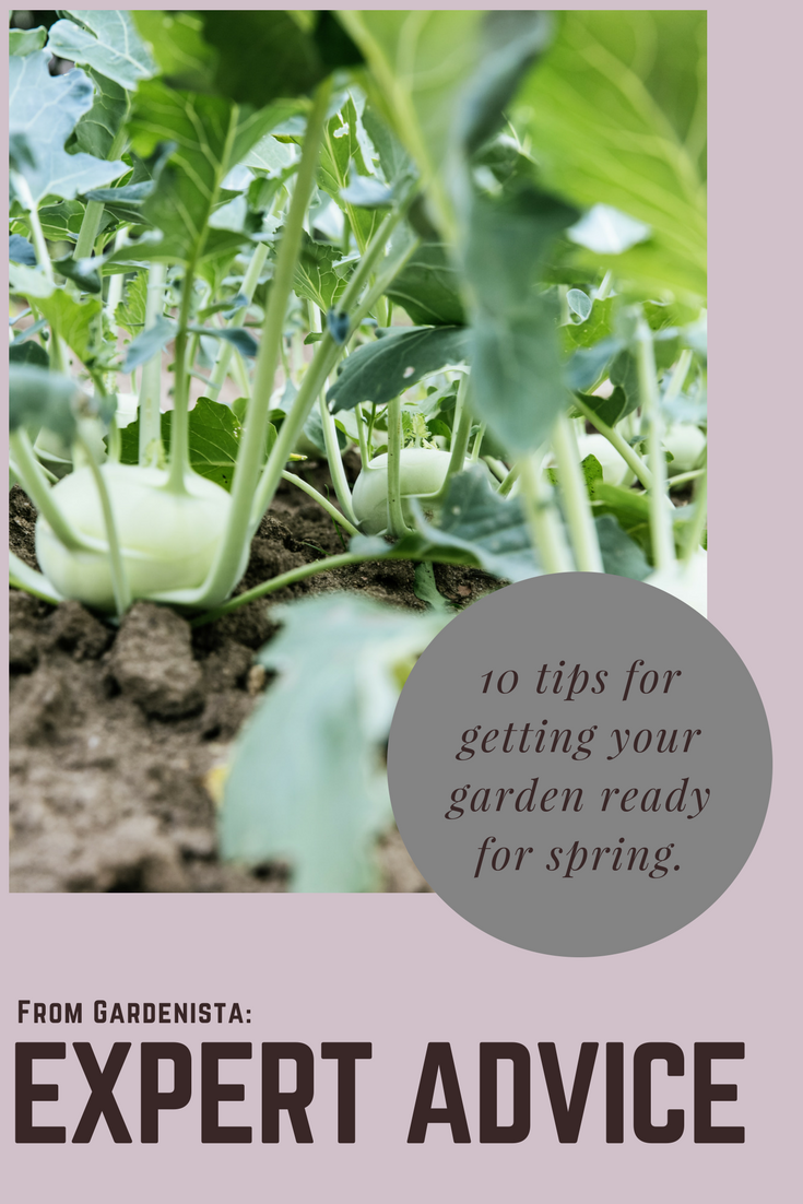 Expert Advice 10 Tips to Get Your Garden Ready for Spring