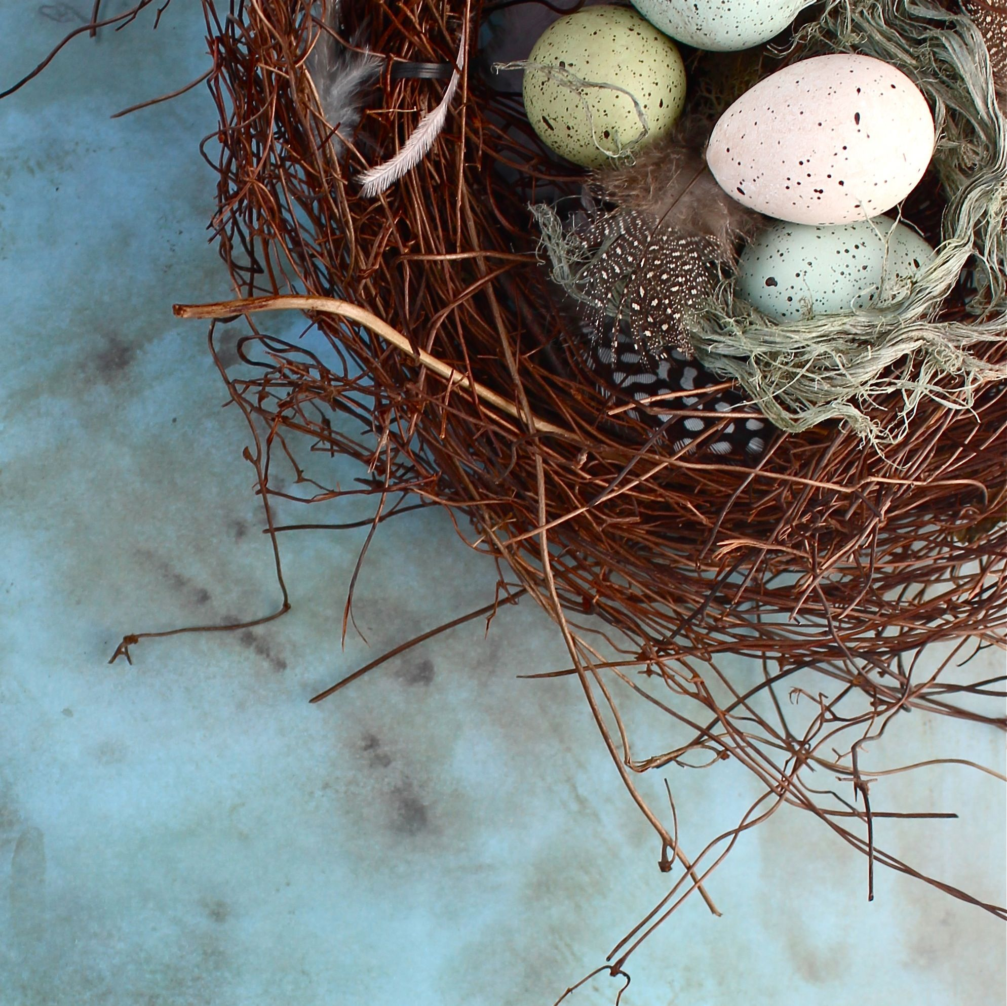 Diy Birds Nest Tutorial From Kate S Creative Space Home