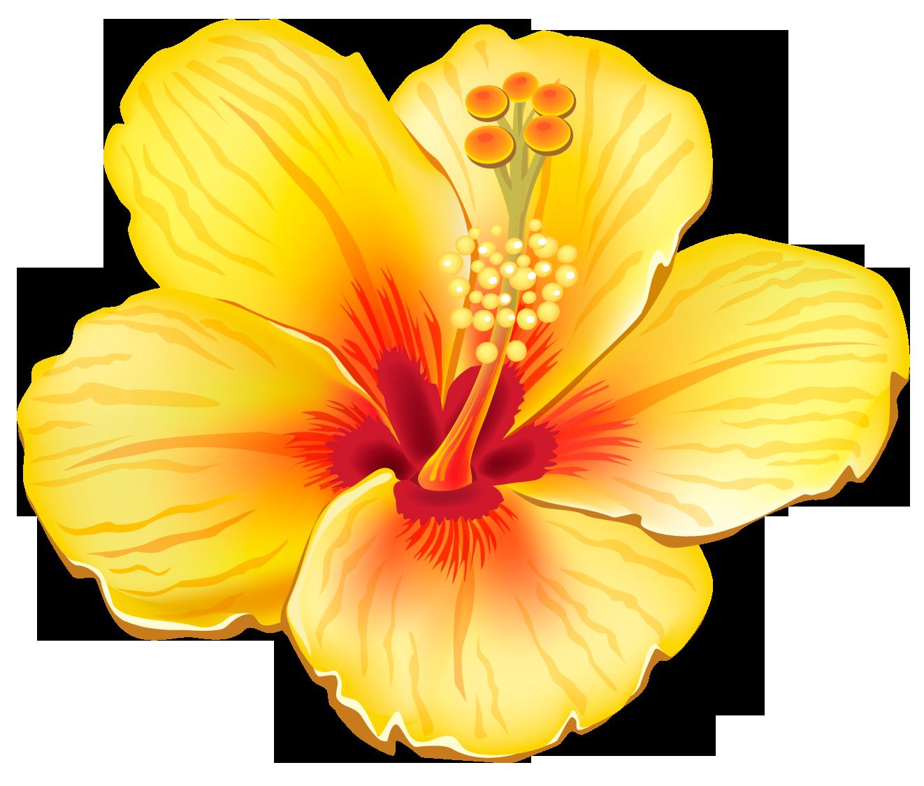 Pin By Monique Fox On Clip Art Tropical Flower Tattoos Hawaiian Art Tropical Flowers