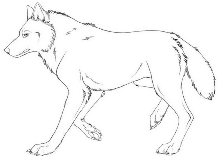 Wolf Ausmalbild 01 Malen