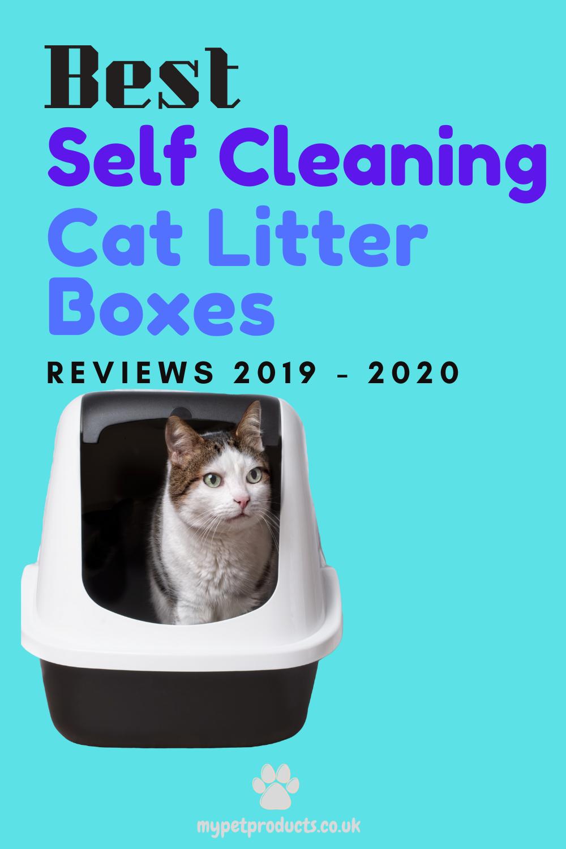 Top 3 Cat Litter Boxes in 2020 Litter box, Cat litter