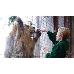 Zoo Keeping for a Day at ZSL London Zoo or ZSL Whipsnade Zoo £299