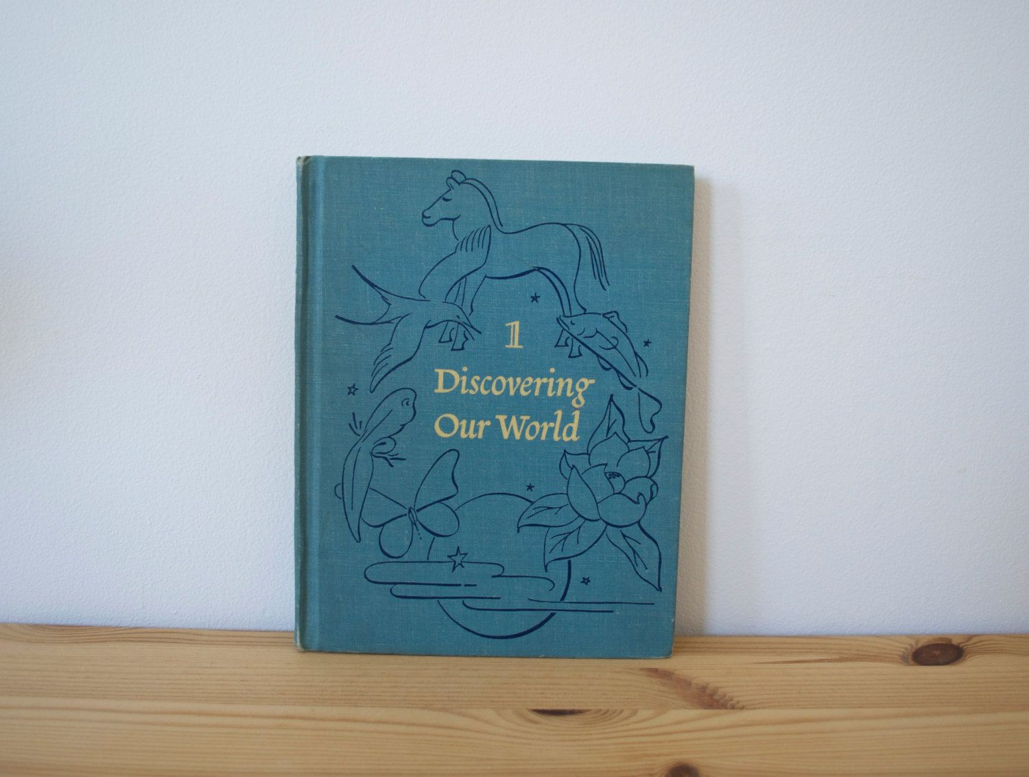 Vintage Science Book For Middle Schoolers Discovering Our
