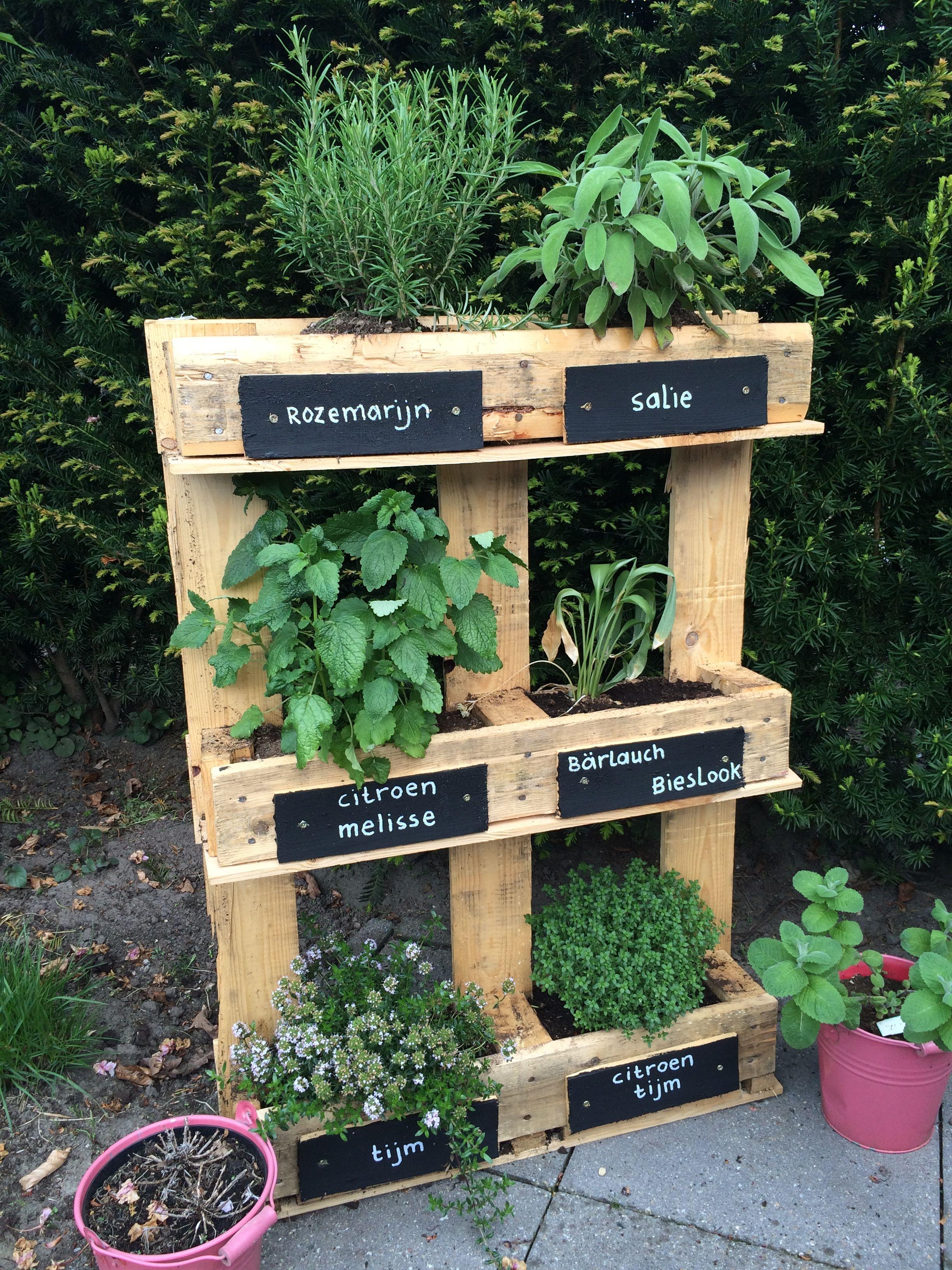 Pin Von Kristina Dempsey Beaudoin Auf Creatief Krautergarten Palette Gartengestaltung Ideen Paletten Garten