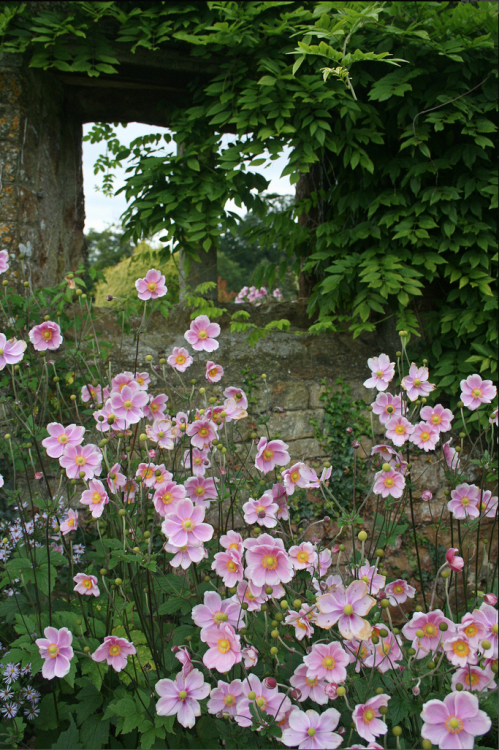 Broughton Castle Gardens -  photo by Iindsey Renton on Flickr