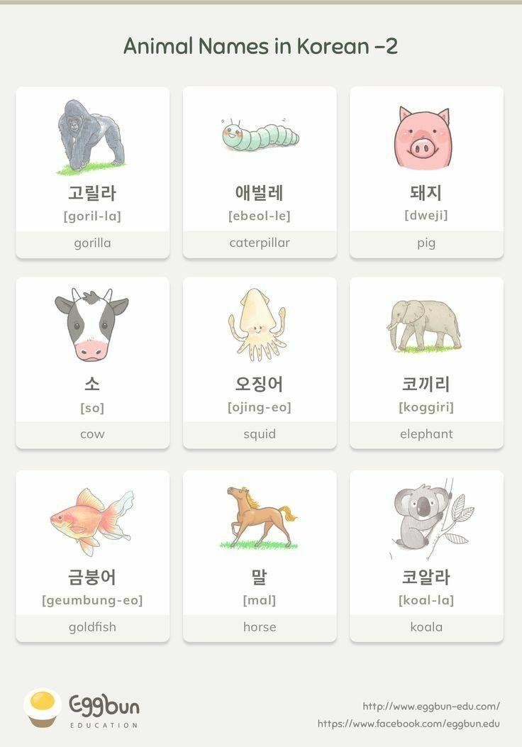 Pin by Payton Hemion on Korean language Korean language