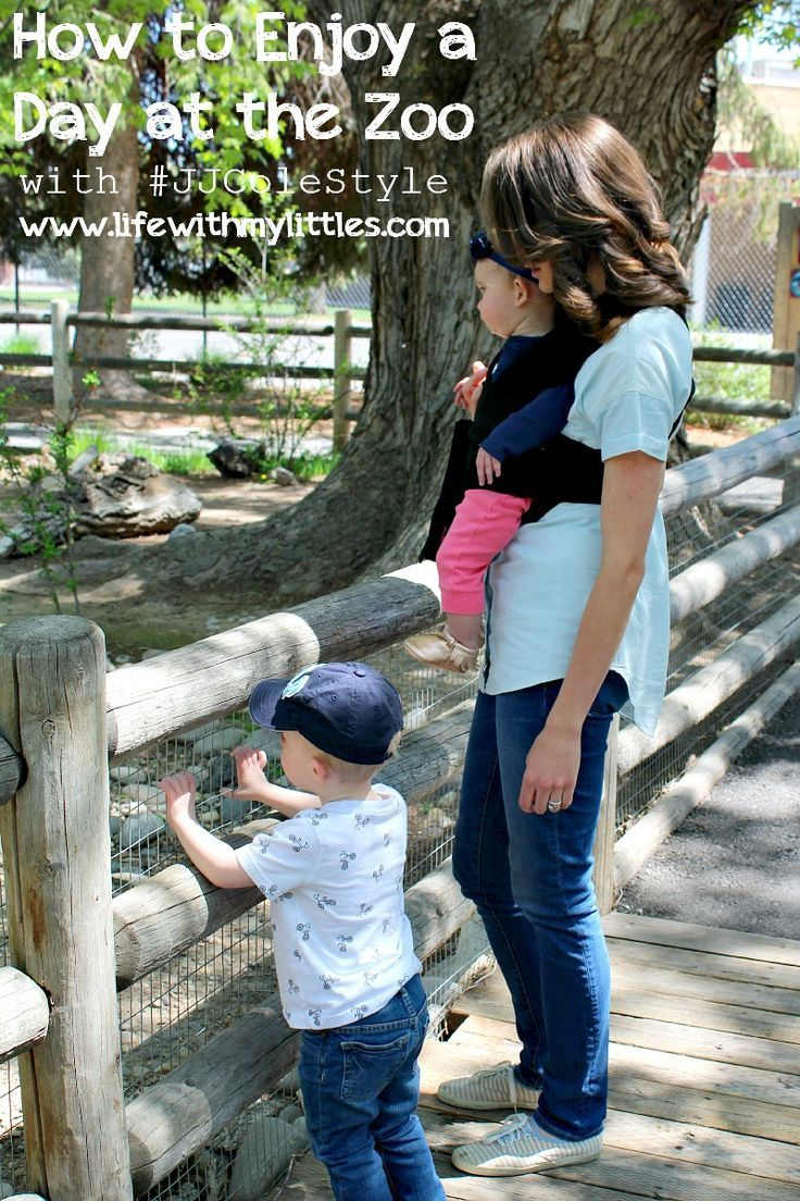 How to Enjoy the Zoo advise