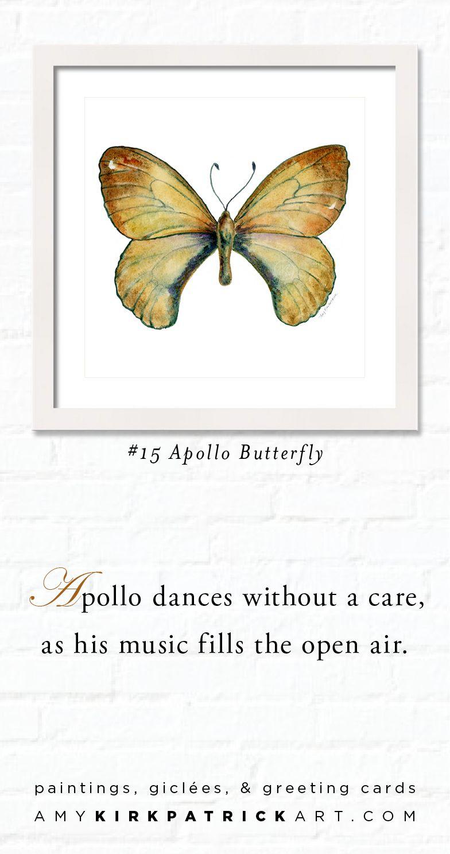 15 apollo butterfly butterfly watercolor art butterfly prints