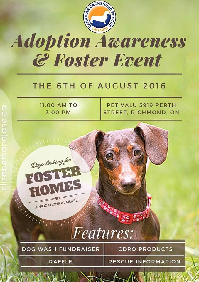Richmond On August 6 2016 Please Come Out To Pet Valu In Richmond On Between 11 00 Am And 3 00 To Support Our Dog Was Adoption Awareness Event Fundraising