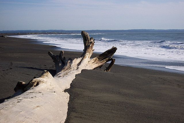 Ocean Shores Washington, going Tuesday night, can't wait :)!!!!!!!
