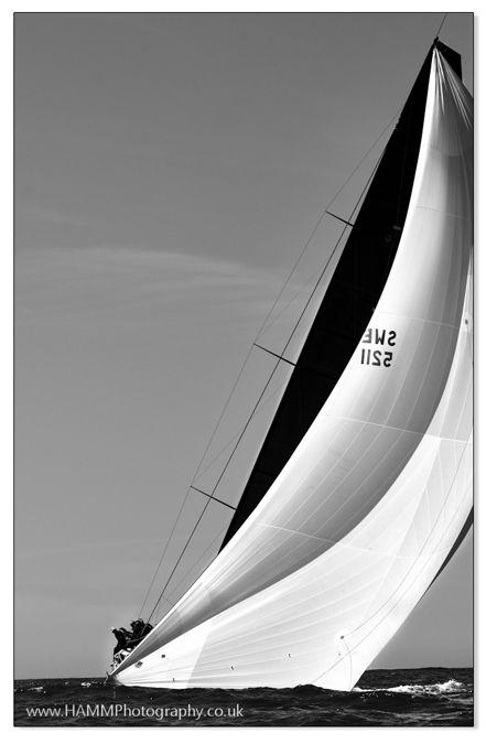 TP52  © Holly Mitchell / HAMM Photography