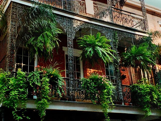 Balcony Plants New Orleans By Ruknight Via Flickr