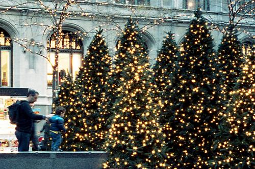 Imagem de christmas, light, and winter