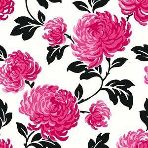 Pink black and white flower wallpaper imagewallpapers fine decor bloom designer feature wallpaper pink white black mightylinksfo
