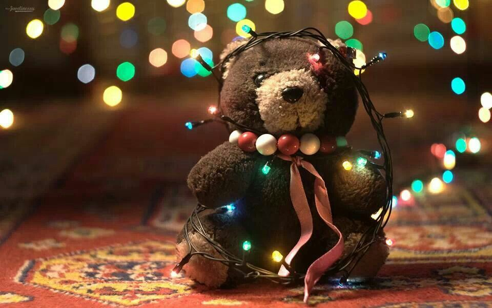 Morbido Natale