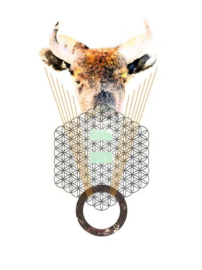 #graphicdesign #ramonbonilla #bison #geometric #art
