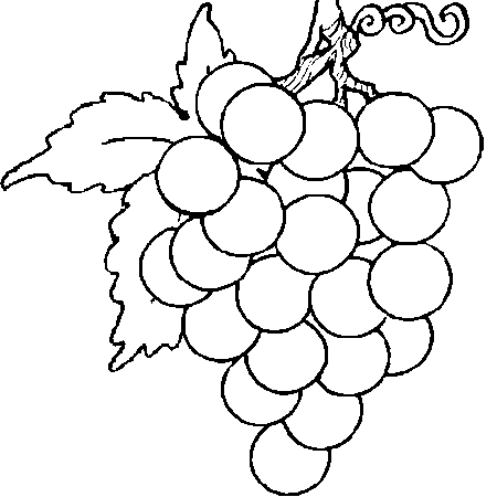 Dessin grappe de raisin a colorier verre pinterest - Verre coloriage ...