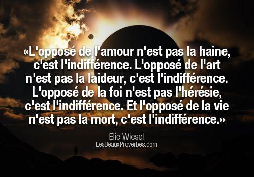 Citation Ignorance Dune Personne