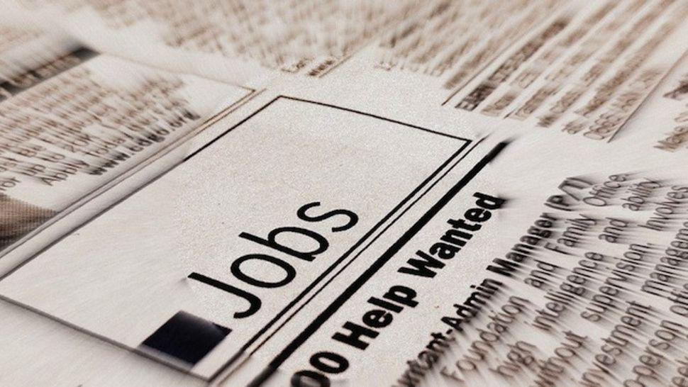 Best 25+ Job opening ideas on Pinterest Networking websites, Job - stock job description