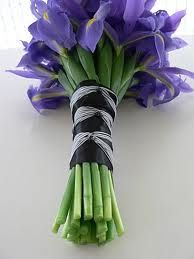 Bouquet Sposa Iris.Simple All Blue Iris Wedding Bouquet Maybe This Is What I Will