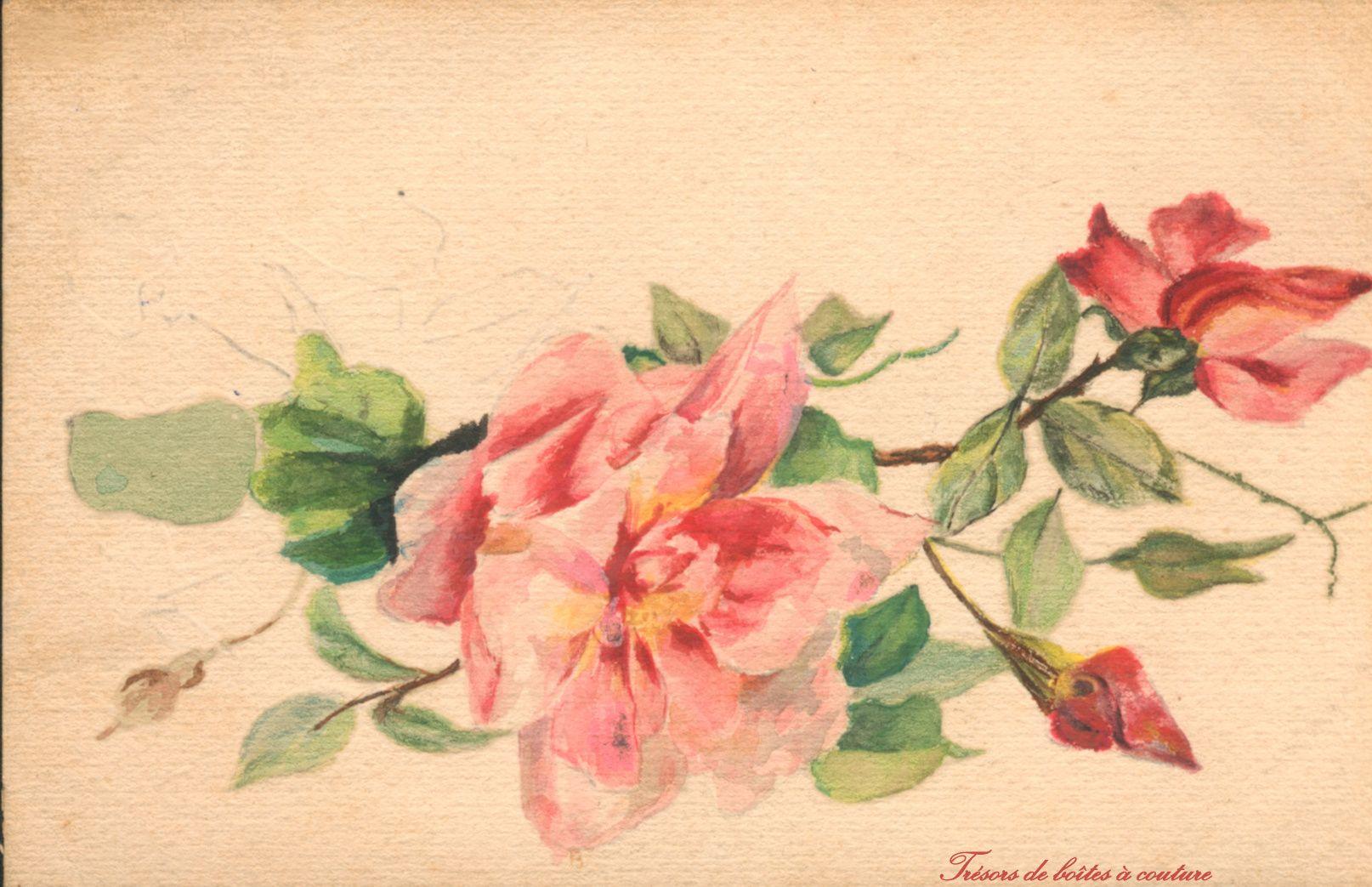 Carte Aquarelle Xixe Art Painting Rose
