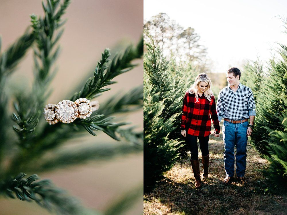 Christmas Tree Farm Engagement Session   Trees, Engagement and ...