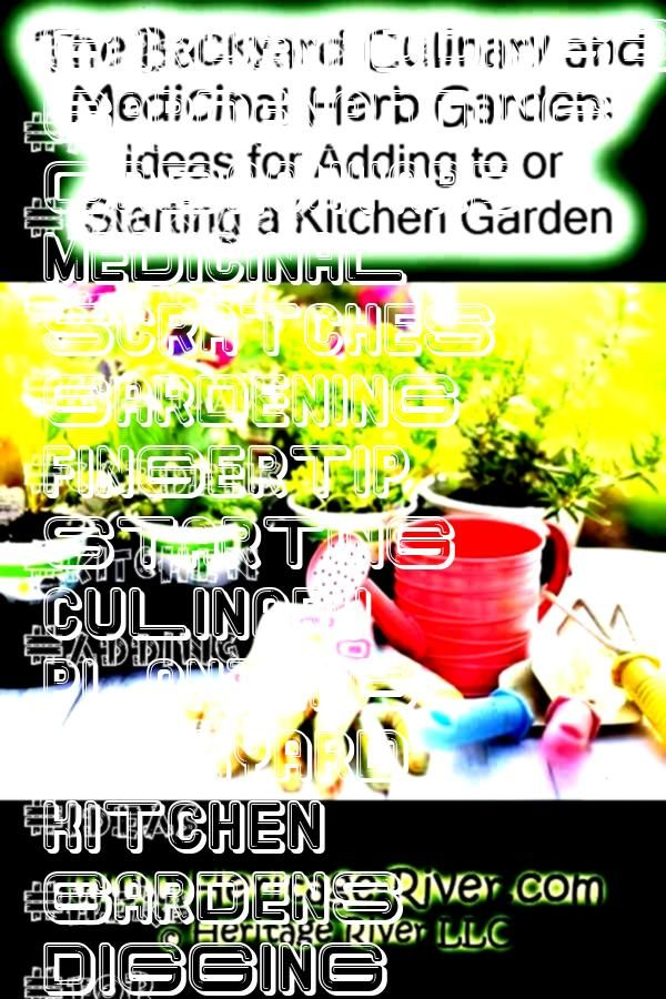 and Medicinal Herb Gardens Ideas for Adding to or Starting a Kitchen GardenaddingBackyard Culinary and Medicinal Herb Gardens Ideas for Adding to or Starting a Kitchen Ga...