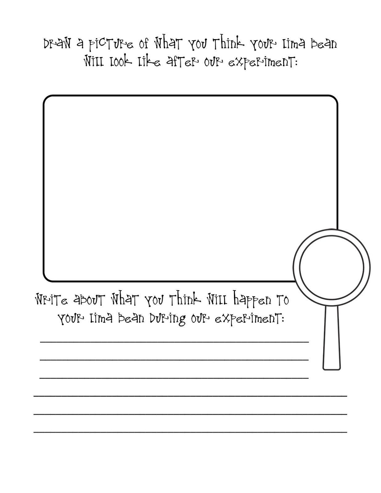 Graphic Organizers Worksheets To Use With Planting Lima