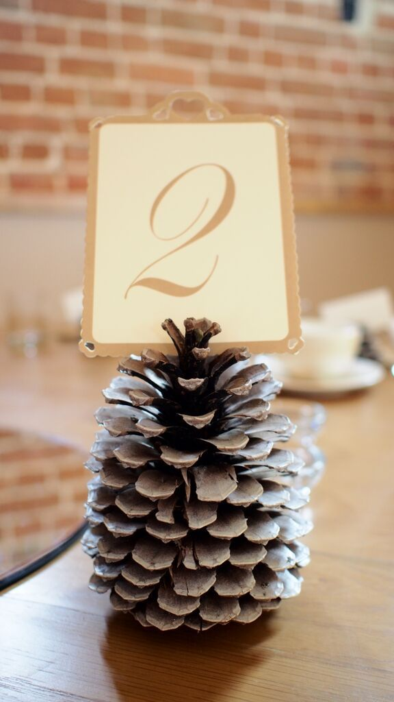 Pine Cone Table Number Holder Autumnal Wedding