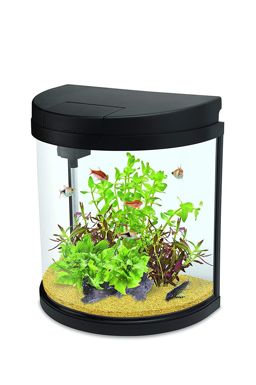 Interpet Led Fishbox Half Moon Aquarium Fish Tank 19 Litre In 2020 Fish Tank Aquarium Fish Tank Aquarium Fish