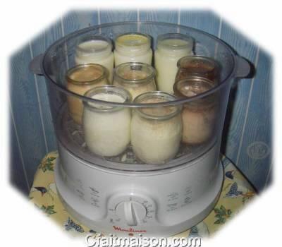 Yaourts au cuit vapeur d licieuses recettes - Fabrication de yaourt maison sans yaourtiere ...