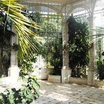 The greenhouse of the Albert Kahn gardens 🌿