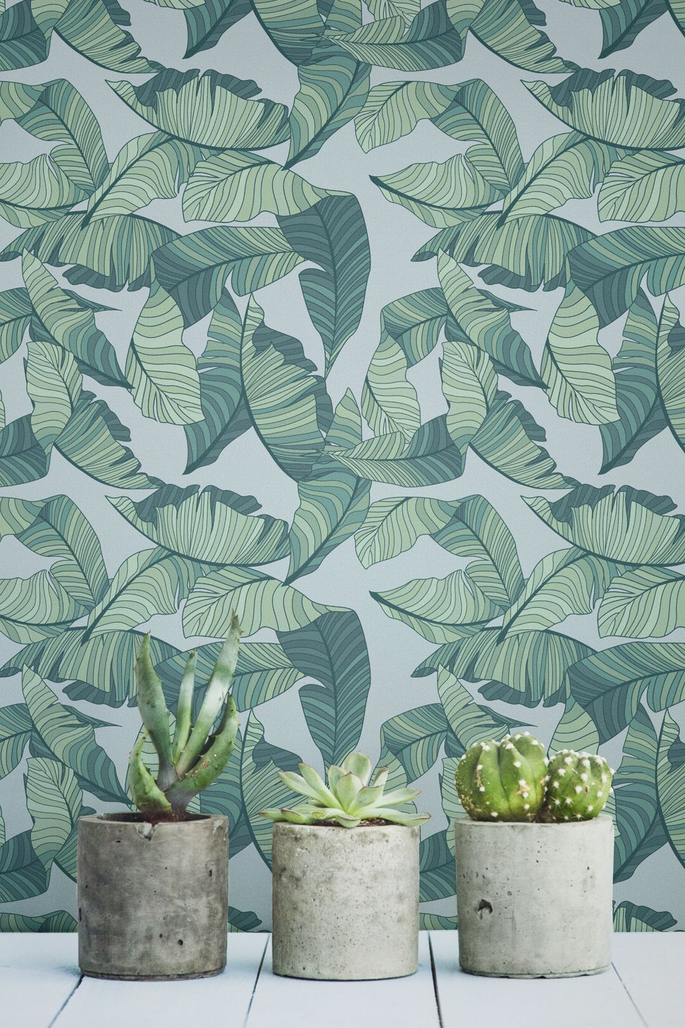 Stay On Trend With These Tropical Wallpapers Tropical